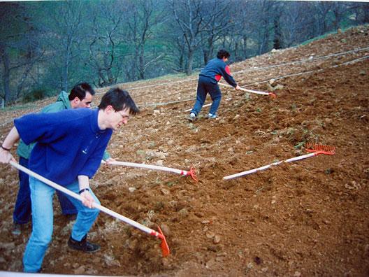 Zona a raíz desnuda del vivero del GECA 1993