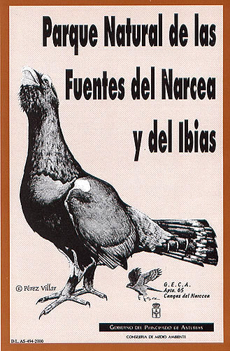 Para la campaña informativa sobre el parque natural, año 2000